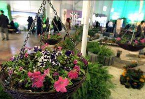 نمایشگاه تخصصی گل و گیاه قم آغاز بکار کرد