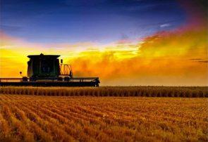 توسعه پایدار در گرو تحول در کشاورزی
