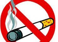 حمایت شهرداری قم برای اجرای طرح «قم شهر بدون دخانیات»