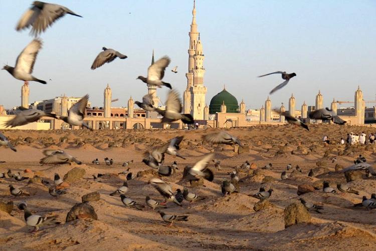 بقیع مدرسهای بزرگ و تراثی عظیم برای کل مسلمانان است