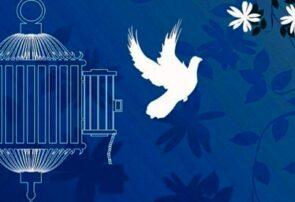 آزادی ۶۱ نفر زندانی در قم به مناسبت دهه ولایت