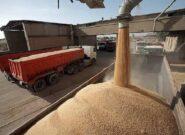 انتقال ۱۸۰ تن گندم انسانی از بندر امام به قم توسط ناوگان راهداری